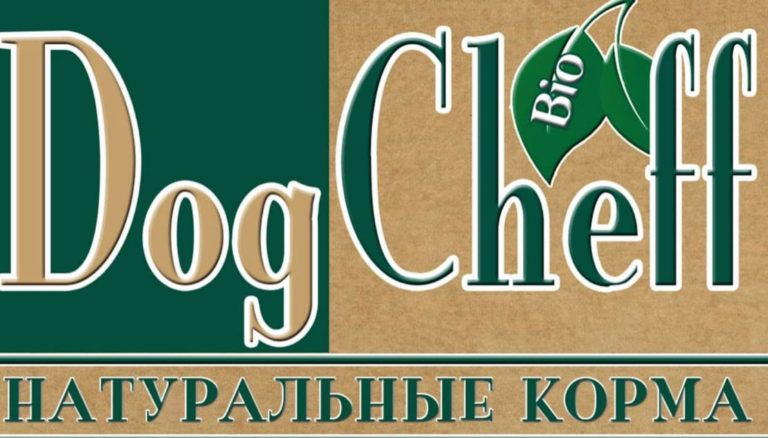Dogcheff